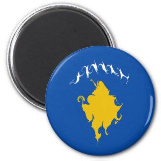 Kosovo Gnarly Flag Fridge Magnet