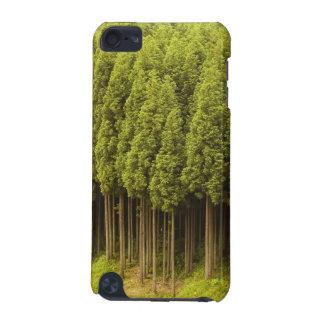 Koya Sugi Cedar Trees iPod Touch 5G Case