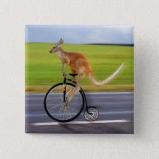 Krazy Kangaroo 15 Cm Square Badge