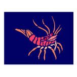 Krebs crab crawfish postkarten