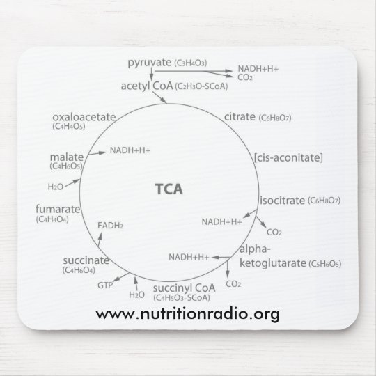 Krebs Cycle mousepad, www.nutritionradio.org Mouse Mat