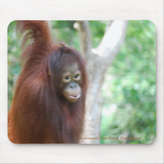 Krista Orangutan Jungle Animal Conservation Mouse Mat