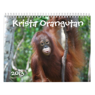 Krista the Orangutan Orphan 2013 wildlife charity Wall Calendar
