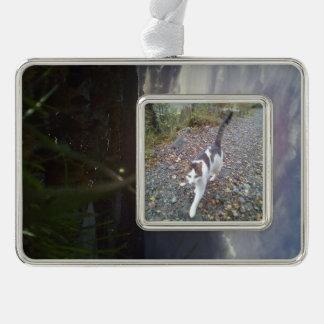 Kristiansten Festning utsikt grass 2.jpg Silver Plated Framed Ornament