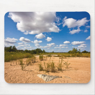 Kruger Landscape - Mousepad