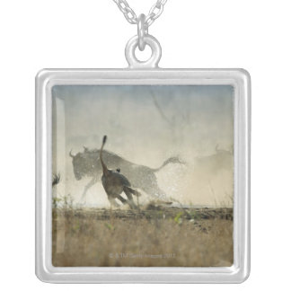 Kruger National Park, Mpumalanga Province, South 3 Silver Plated Necklace