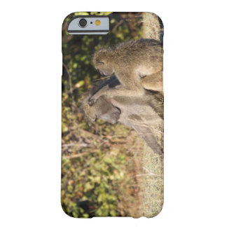 Kruger National Park, South Africa Barely There iPhone 6 Case