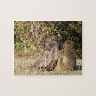 Kruger National Park, South Africa Jigsaw Puzzle