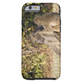 Kruger National Park, South Africa Tough iPhone 6 Case