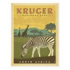Kruger National Park, South Africa | Zebras & Gira Postcard