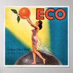 KRW Eco Oranges Vintage Fruit Crate Label Poster