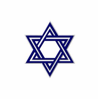 KRW Star of David Hanukkah Pin Photo Sculpture Badge