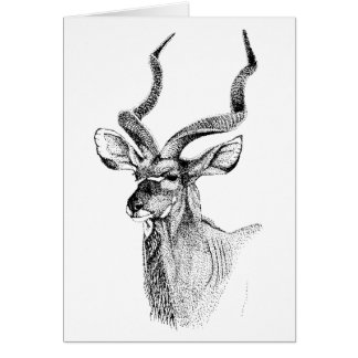 Kudu Antelope Birthday Card