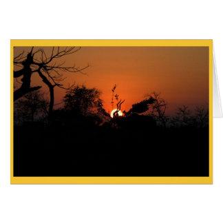 Kudu Sunset Card