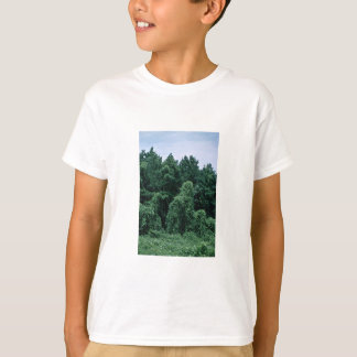 Kudzu/ Overgrown Forest T-Shirt