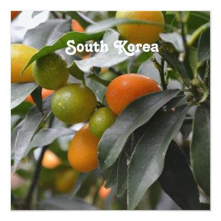 Kumquats from South Korea 13 Cm X 13 Cm Square Invitation Card