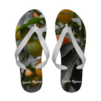 Kumquats from South Korea Flip Flops