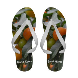 Kumquats from South Korea Sandals
