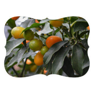 Kumquats from South Korea Personalized Invitations