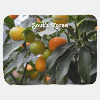 Kumquats from South Korea Baby Blanket