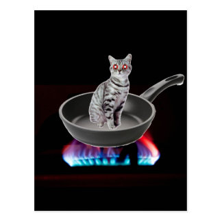 Kung Pao Cat Postcard