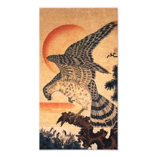 Kuniyoshi Hawk Print Art Photo