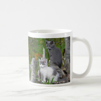 Kute Kittens Coffee Mug