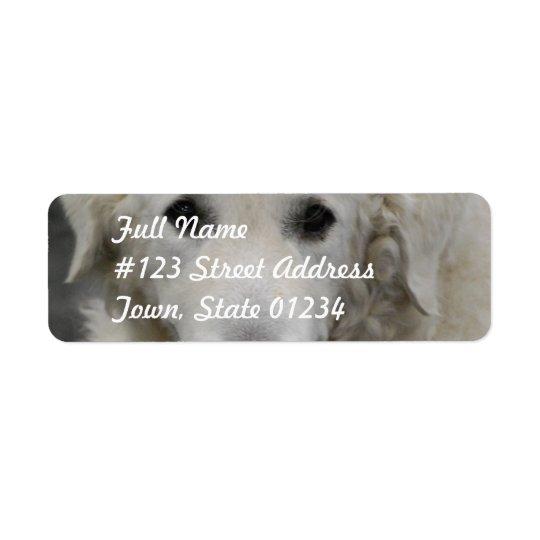 Kuvasz Dog Breed Mailing Labels