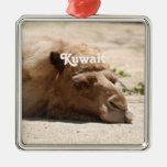 Kuwait Camel