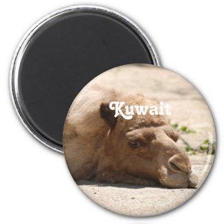 Kuwait Camel 6 Cm Round Magnet