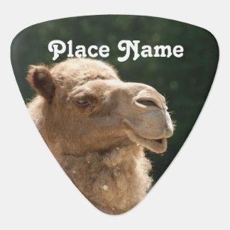 Kuwaiti Camel Guitar Pick