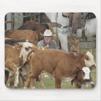 Kyle waiting with calf during round-up, mouse pad