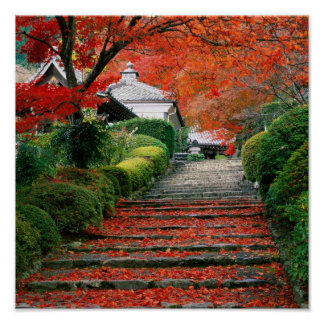 Kyoto, Autumn Leaves Poster