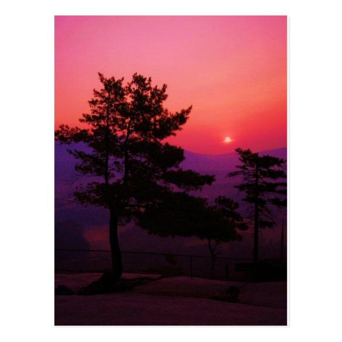 l_82ababc6e65ba6b32e37e64d69a96d3c postcard