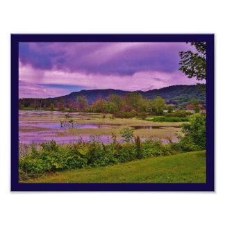 La Crosse River Marsh Photo Art
