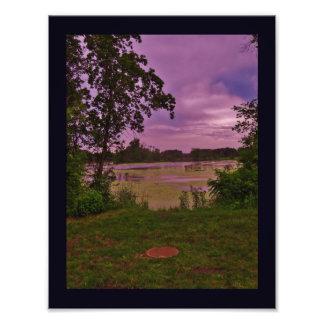 La Crosse River Marsh Photo Print