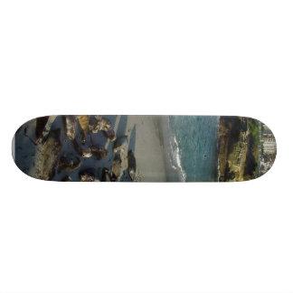La Jolla Cove Beach Waves Sand Seals 21.3 Cm Mini Skateboard Deck