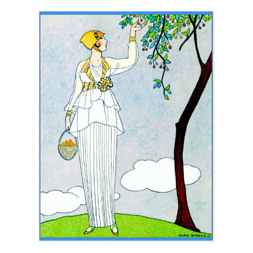 La Saison Des Prunes Mirabelles Post Cards