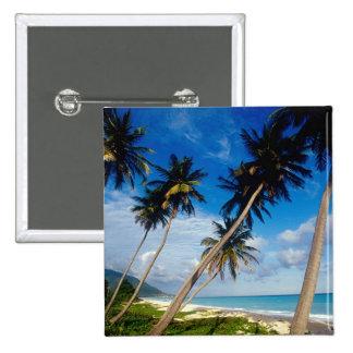 La Samana Peninsula, Dominican Republic, 15 Cm Square Badge