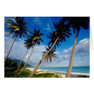 La Samana Peninsula, Dominican Republic, Card