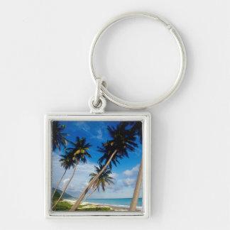 La Samana Peninsula, Dominican Republic, Silver-Colored Square Key Ring