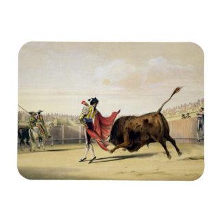 La Suerte de la Capa, 1865 (colour litho) Rectangular Photo Magnet
