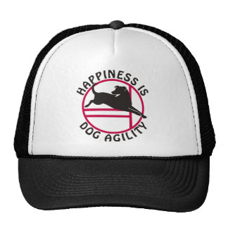 Lab Agility Happiness Mesh Hat