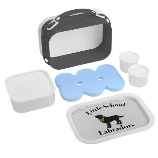 Lab Lunch BOX