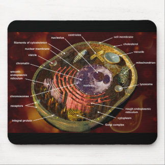 Labeled human cell mousepad