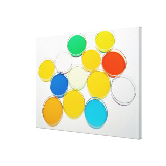 Laboratory Dish 2 Canvas Print