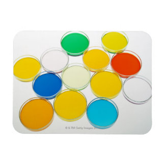 Laboratory Dish 2 Rectangular Magnets