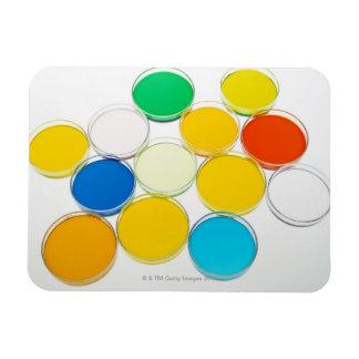 Laboratory Dish 2 Rectangular Photo Magnet