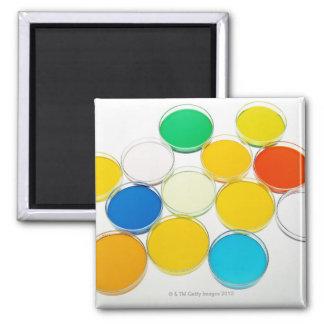 Laboratory Dish 2 Square Magnet