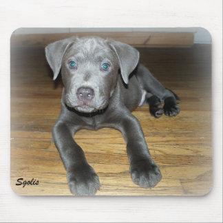 Labrabull Silver Puppy Mousepad